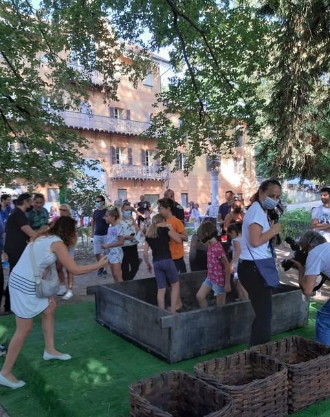 Fontanafredda: la vendemmia 2021 porterà al Rinascimento Verde