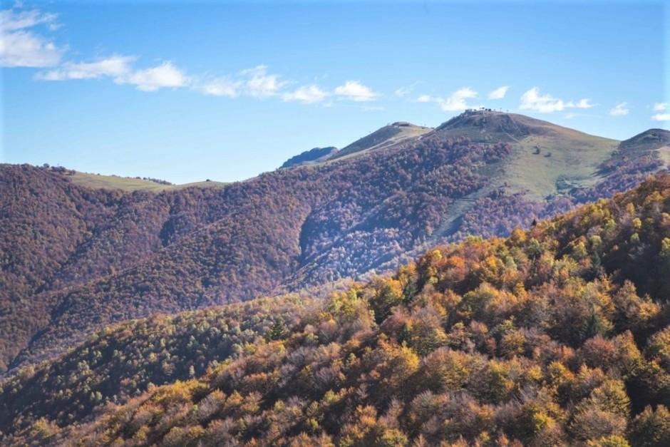 Oasi Zegna - Biella (Piemonte) ottobre è il mese ideale per scoprire la magia del Bosco del Sorriso