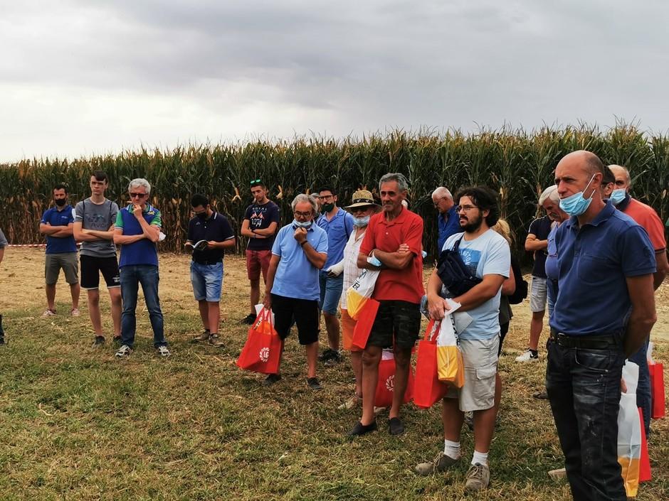 Nuove tecniche di coltivazione di mais e soia. un successo per l'evento di Fondazione Podere Pignatelli