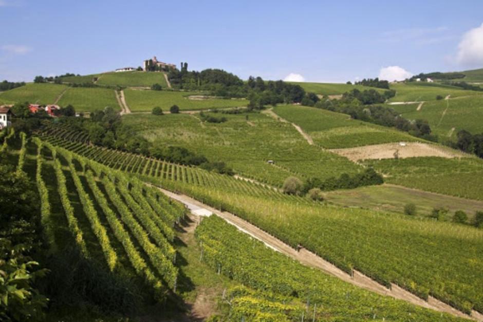 """Nelle Langhe Monferrato e Roero Il turismo diventa sempre più """"Locals"""""""