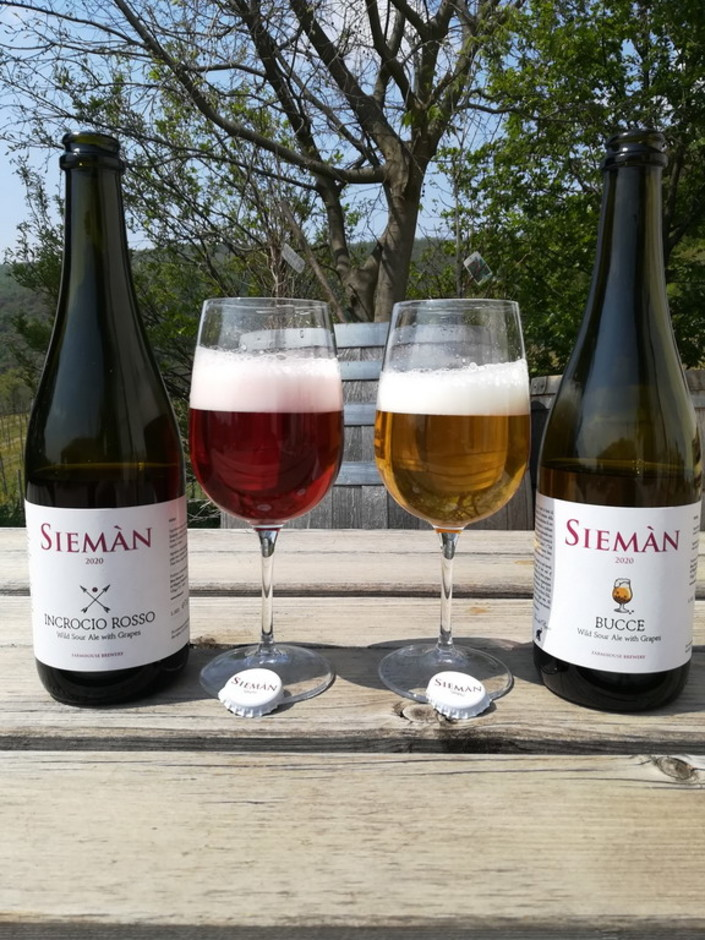 Grande successo per il progetto IGA, dedicato alle 'Italian Grape Ale', lo stile brassicolo tutto italiano che unisce la birra e il vino