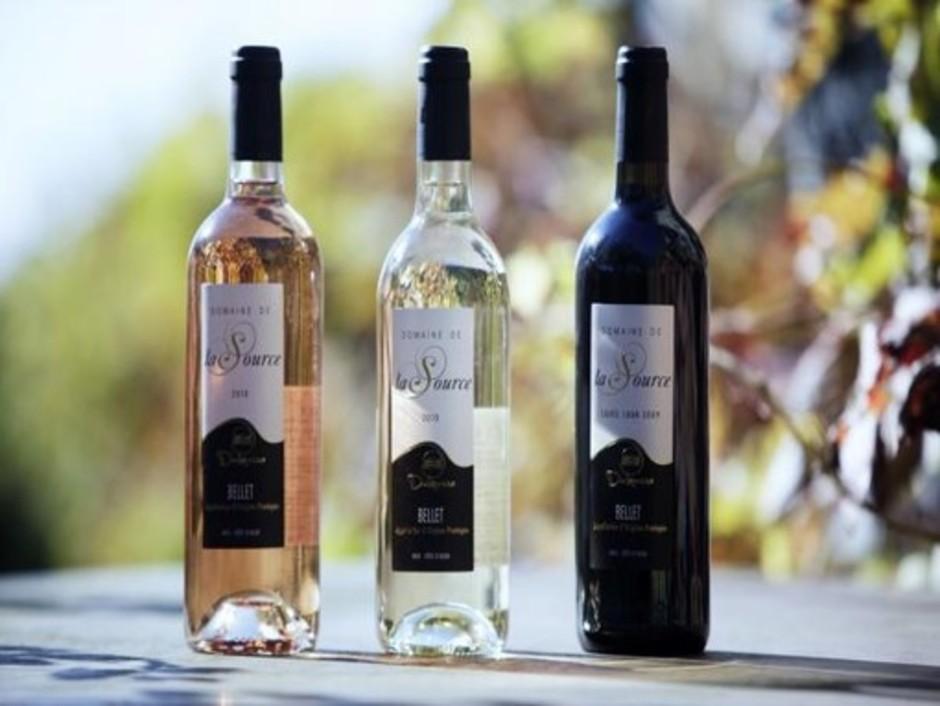 Nizza: alla scoperta dei vini di Bellet, grandi protagonisti della enogastronomia nizzarda