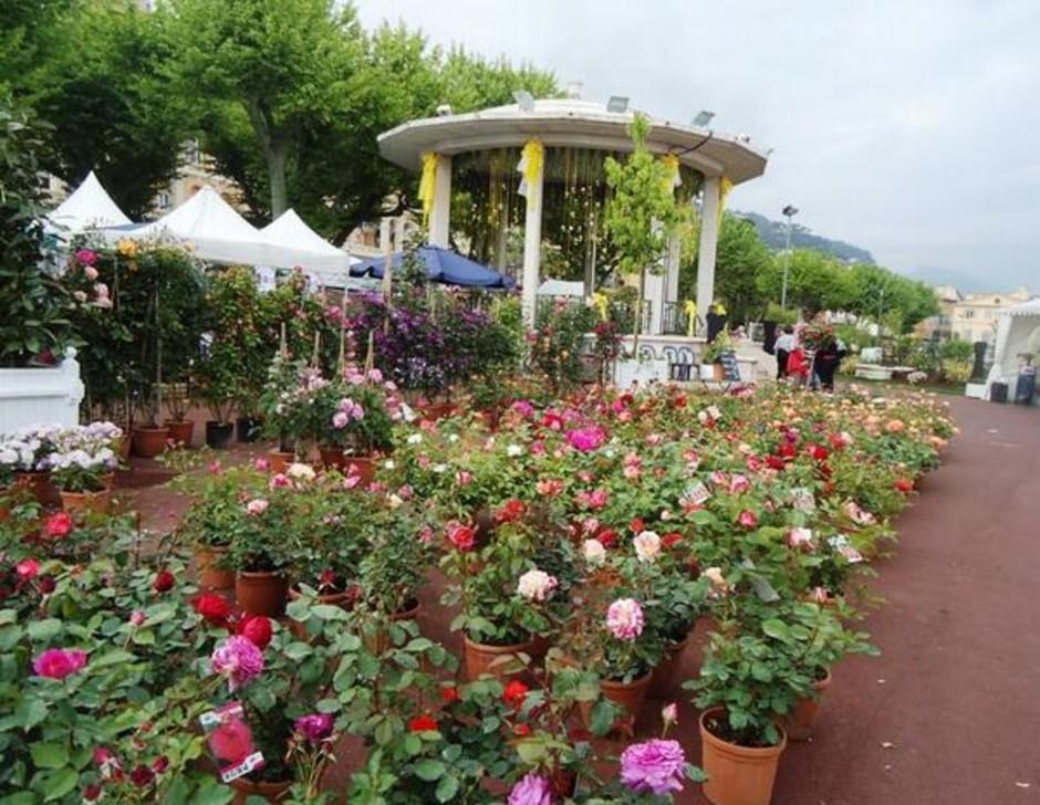 "Costa Azzurra: torna a Grasse ""Una primavera in giardino"""