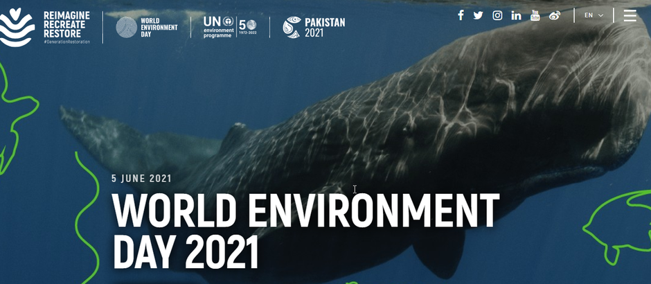 Il 5 giugno si festeggia la Giornata Mondiale dell'Ambiente 2021