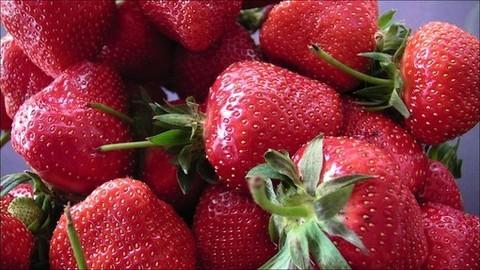 Costa Azzurra: torna la festa della fragole di Carros, una grande passione dei gourmet francesi (Video)